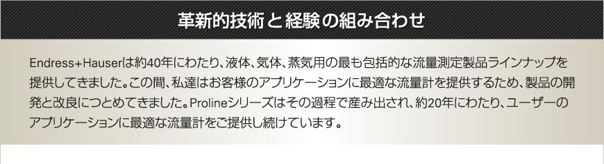 エンドレスハウザージャパン